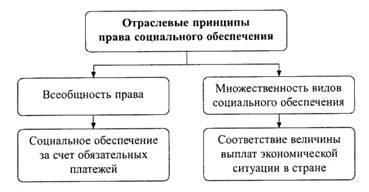 X. Правила организации